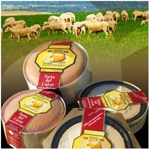 Torta del Casar Sheep Cheese