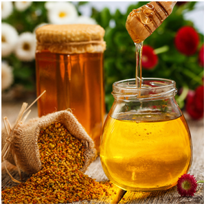 Handmade Galician Honey